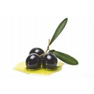 Bio-Olivenöl - nativ extra - DE-ÖKO-006 Kontrollstelle