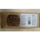 Graviola Blätter (annona - muricata) - Wildwuchs