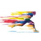 HanseFit  - Sport Premium